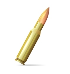 Bullet Realistic Style on White Background vector image vector image
