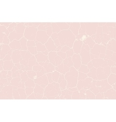Cracked Pink Texture vector image