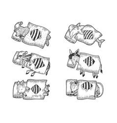 cartoon sleeping animals set sketch vector image