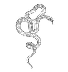 Hand drawn monochrome snake vector