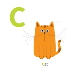 Letter C Cat orange English abc with animals Zoo vector