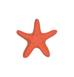 sea star icon in cartoon style vector image