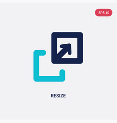 Two color resize icon from arrows concept vector