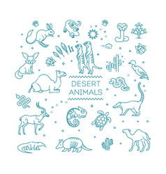 wildlife concept with different desert animals vector image