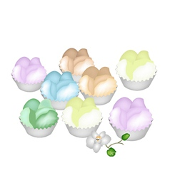 Culorful Thai Steamed Cupcake on White Background vector image