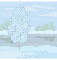 winter landscape tree on the shore vector image vector image