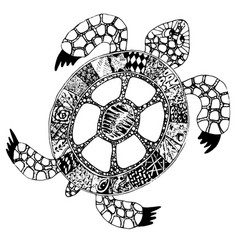 hand drawn doodle turtle tortoise with vector image vector image