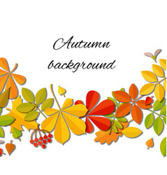 autumn falling leaf isolated on white background vector image