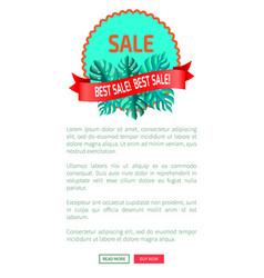 best sale promotional emblem with palm leaves vector image