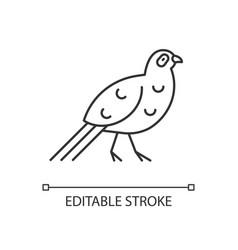 Bird linear icon vector