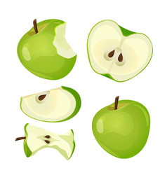 Bitten apple whole half and slice isolated on vector