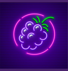 Blackberry berry in circle vector