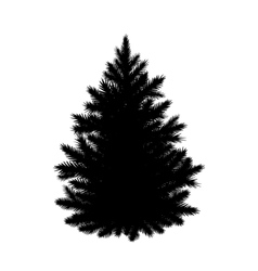 Fir-tree silhouette vector image