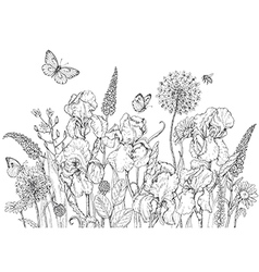 iris butterfly monochrome vector image