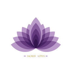 Purple lotus flower life sacred geometry logo vector