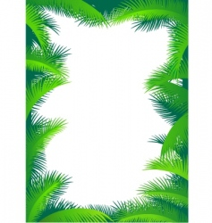 palm border vector image vector image