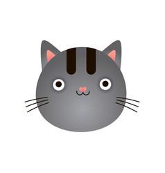 cute gray kitten face baby animal head vector image
