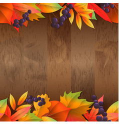 seamless natural background with wooden board and vector image