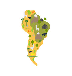 South america flora and fauna map animals vector
