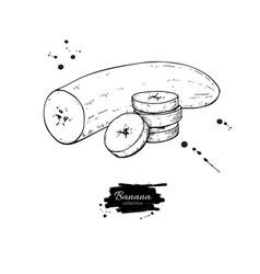 Banana sliced and peeled piece drawing vector