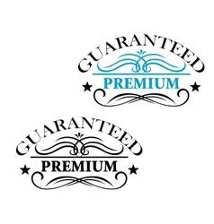 Guaranteed Premium calligraphic elements vector image