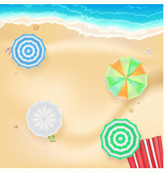 summer background banner with seashore colored vector image