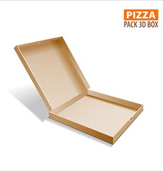 Pizza box packing vector image vector image