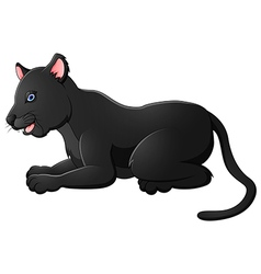Cartoon black panther vector image