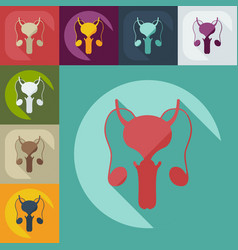 Flat modern design with shadow icons male vector