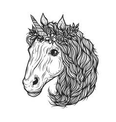 hand drawn cute unicorn vector image