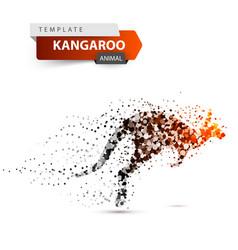 kangaroo dot onthe white background vector image