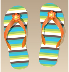 pair of flip-flops vector image