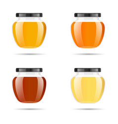 realistic transparent glass jar with honey food vector image