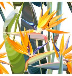 Seamless background with strelitzia reginae vector