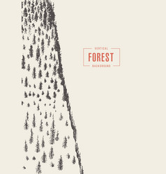 vertical pine forest drawn sketch vector image