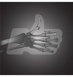 X-Ray LikeThumbs Up symbol vector image vector image
