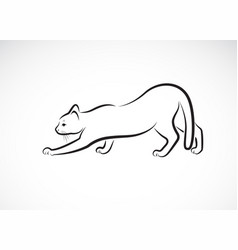 A cat design on white background pet animals vector