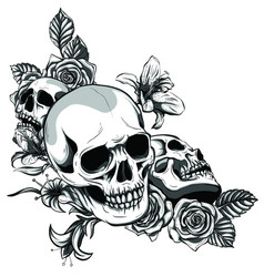 human skull with roses drawn in tattoo style vector image