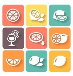 lemon lime icons set vector image