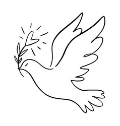 line art dove flying pigeon logo drawing black vector image