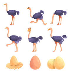 Ostrich icons set cartoon style vector