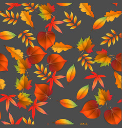 seamless with red and yellow autumn leaves vector image