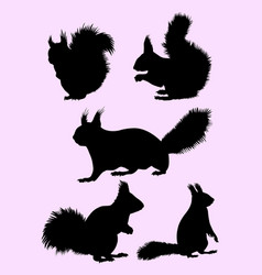 Squirrel animal gesture silhouette vector