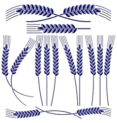 Ears of wheat and rye icon set vector