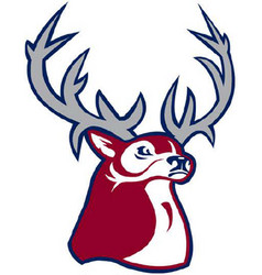 Buck logo mascot vector