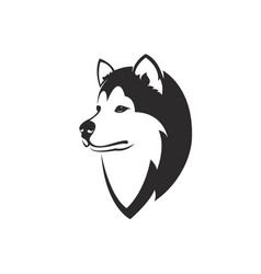 Dog head design siberian husky vector
