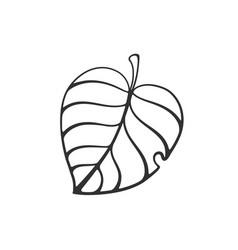 doodle tree leaf vector image