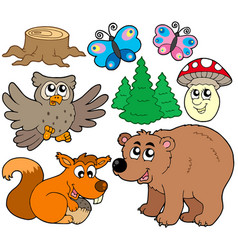 forest animals collection 3 vector image