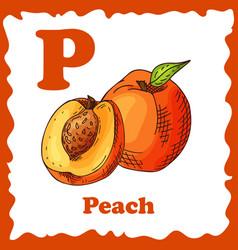 Fruit alphabet for education vector
