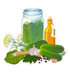 Jar with cucumbers and ingredients for pickles vector